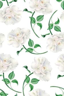 Vintage wzór akwarela z realistycznymi białymi i różowymi różami