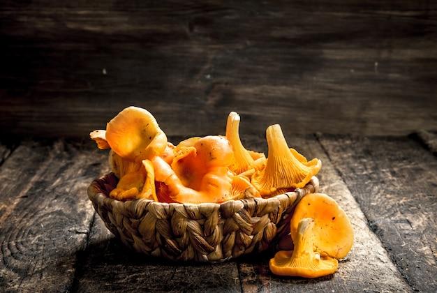 W koszyku kurki grzybowe.