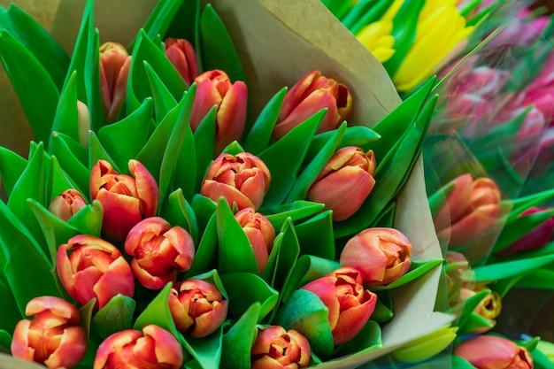 W kwiaciarni. asortyment świeżych kwiatów tulipanów na sprzedaż. wiosenne kwiaty.