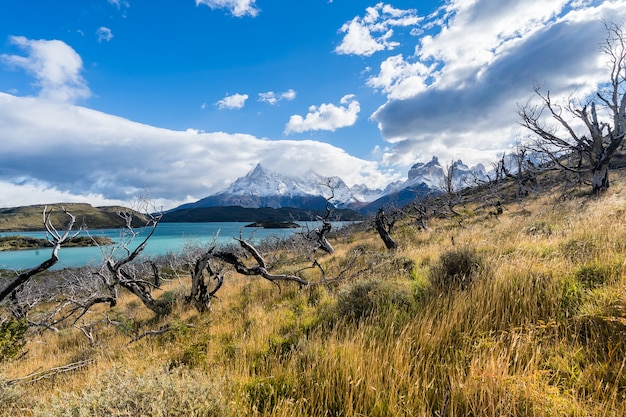 W parku narodowym torres del paine, patagonia, chile, lago del pehoe.