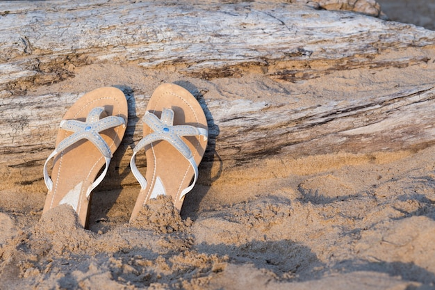 W pobliżu starej kłody na piasku są klapki, słoneczny letni dzień
