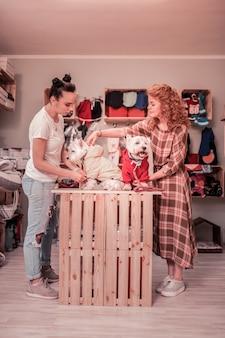 W sklepie. rudowłosa, szczupła, stylowa kobieta kochająca zwierzęta, które przychodzą do sklepu zoologicznego ze swoimi psami