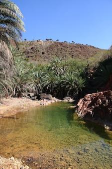 Wadi dirhur canyon, wyspa sokotra, ocean indyjski, jemen