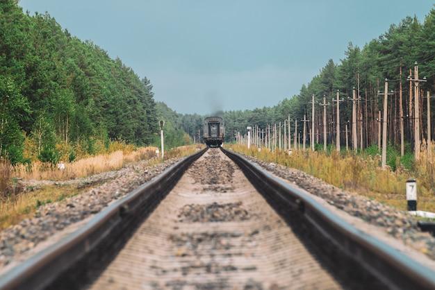 Wagon kolejowy jedzie po szynach w lesie.