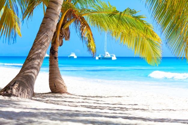 Wakacje letnie wakacje w tle tapety słoneczny tropikalny egzotyczny karaibski raj plaża