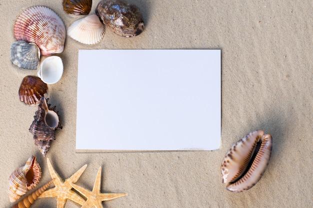 Wakacyjna plaża z muszlami, seastarami i pustą pocztówką