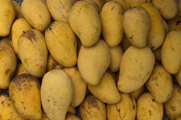 Wallpepar świeży żółty mango