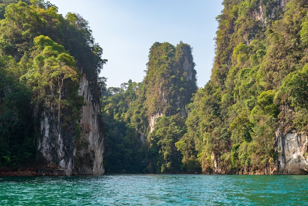 Wapień góry z drzewami w morzu w tajlandia