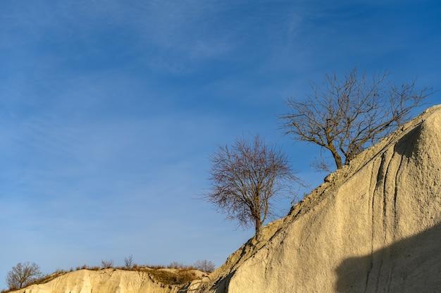Wapienny klif z drzewami na szczycie w kamieniołomie wapienia
