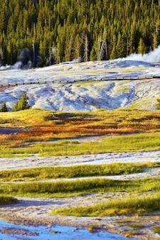 Warunki surowe w yellowstone