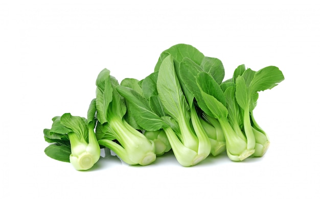 Warzywa bok choy