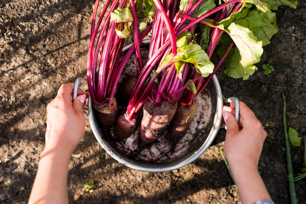 Warzywa układać płasko w garnku