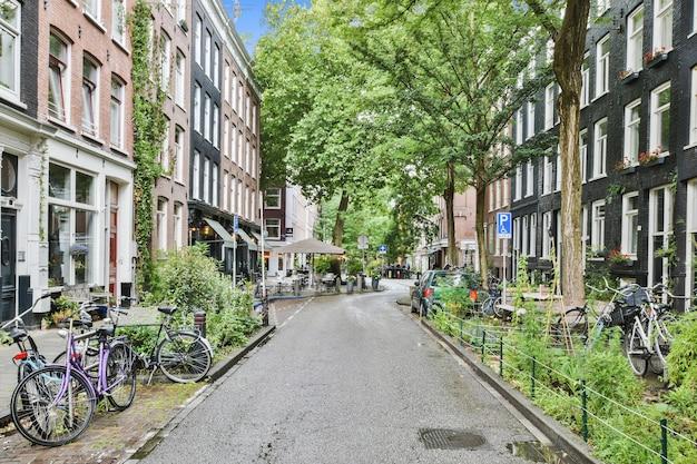 Wąska asfaltowa droga pomiędzy typowymi budynkami mieszkalnymi w tradycyjnym stylu architektonicznym i zielonymi drzewami w letni dzień w amsterdamie