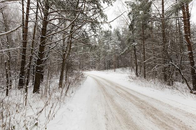 Wąska, nieutwardzona zimowa droga dla ruchu samochodowego, pokryta śniegiem