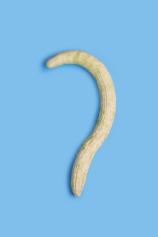 Wąż melon lub dynia na białym tle