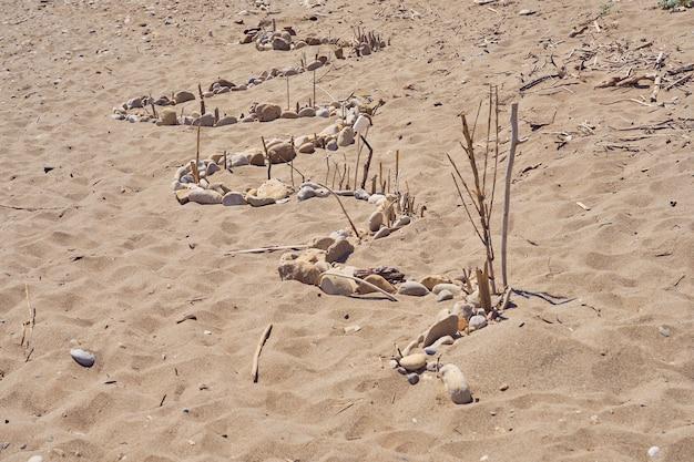 Wąż wyłożony kamykami i gałęziami na piasku.