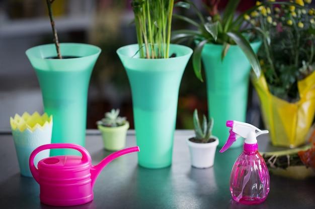 Wazon, konewka, roślina doniczkowa i butelka z rozpylaczem na stole