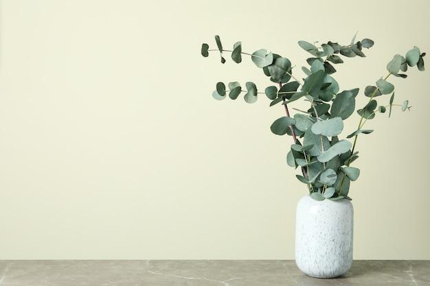 Wazon z gałęziami eukaliptusa na jasnobeżowym tle