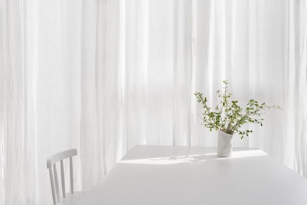 Wazon z zieloną rośliną w białym pokoju