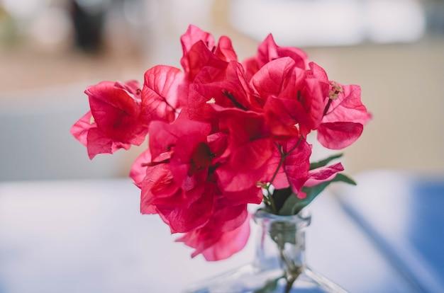 Wazon ze szklanej butelki na czerwony kwiat