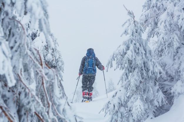 Wędrowcy w zimowych górach