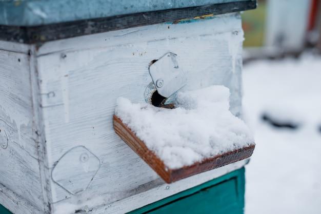 Wejście do ula pokryte grubą warstwą śniegu. ule w ogrodzie w zimie śnieg podłogi.
