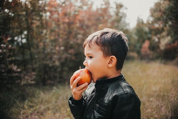 Wesoły chłopiec w jesiennym lesie zjada jabłko pierwszej równiarki