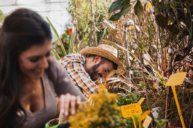Wesoły ludzie pracujący z roślinami