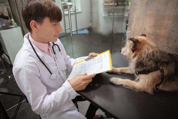 Wesoły mężczyzna weterynarz bada psa ze schroniska rasy mieszanej w swojej klinice dla zwierząt