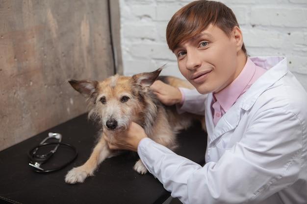 Wesoły mężczyzna weterynarz uśmiechając się do kamery, pieszcząc uroczego psa schroniska rasy mieszanej w swoim gabinecie lekarskim