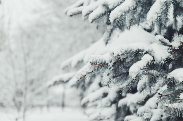 Wesołych świąt i szczęśliwego nowego roku pozdrowienie tła. zima krajobraz z śniegiem i choinkami