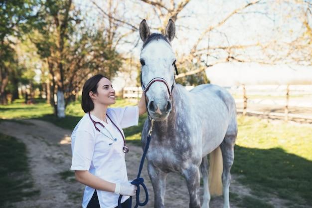 Weterynarz pieści konia na zewnątrz na ranczo. selektywna koncentracja na koniu.