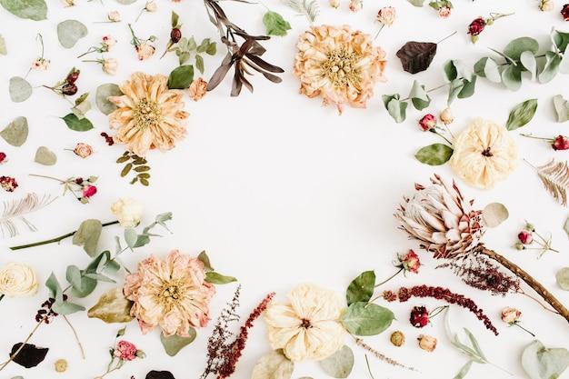 Wianek w okrągłej ramie wykonany z suszonych kwiatów: beżowa piwonia, protea, gałęzie eukaliptusa, róże na białym tle