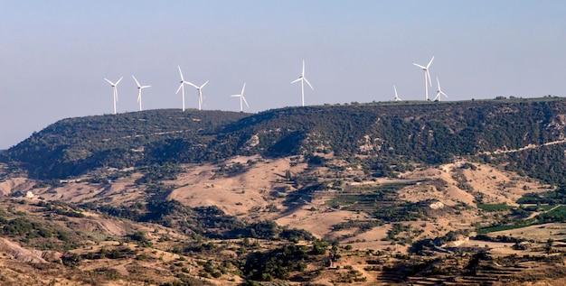 Wiatraki na cyprze