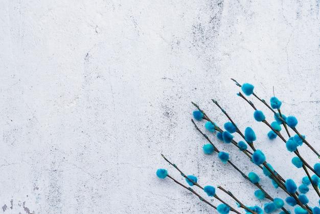 Wiązka błękitne wierzbowe gałązki
