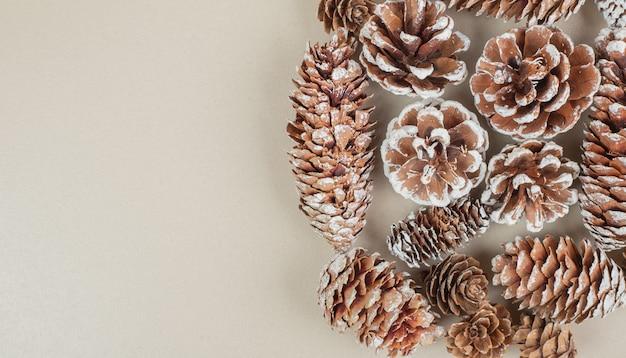 Wiązka drewnianych szyszek sosnowych umieszczonych na beżowym tle.