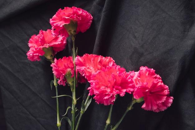 Wiązka świezi różowi kwiaty