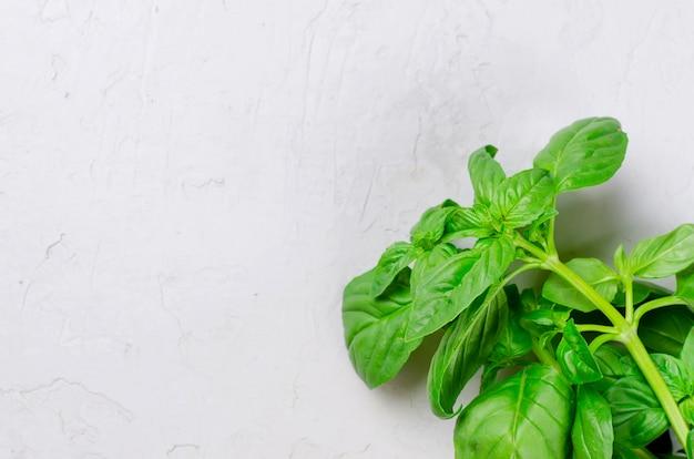 Wiązka świeży zielony basil na drewnianej powierzchni