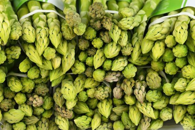 Wiązki zielone szparagi, tekstura warzyw. jedzenie organiczne.