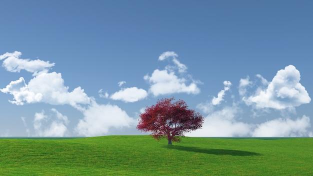 Widescreen drzewo krajobraz