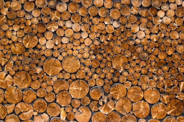 Widok dekoracyjnej ściany z naciętymi końcami fragmentu drzewa z pęknięciami i rocznymi słojami