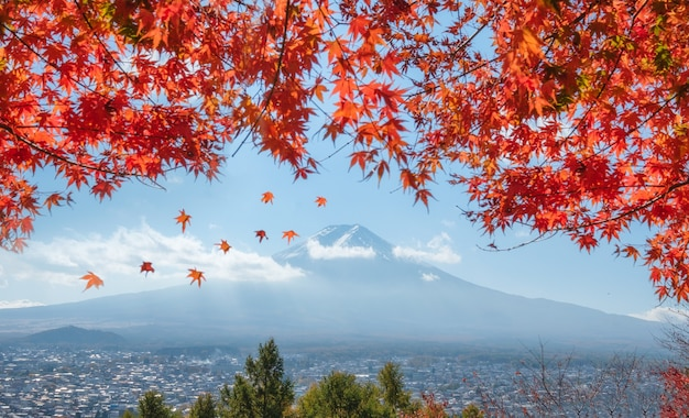Widok góry fuji na miasto z czerwoną pokrywą maple w japonii