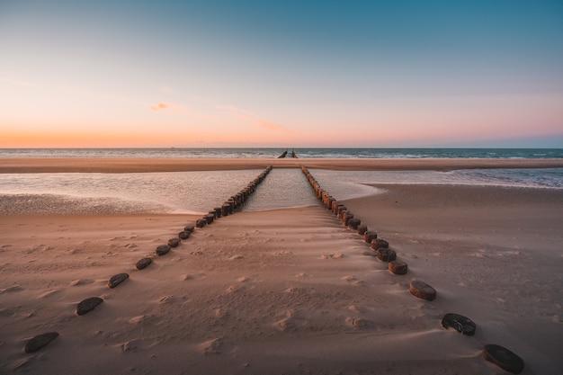 Widok kłód drewna pokrytych piaskiem na plaży zrobiony w oostkapelle w holandii