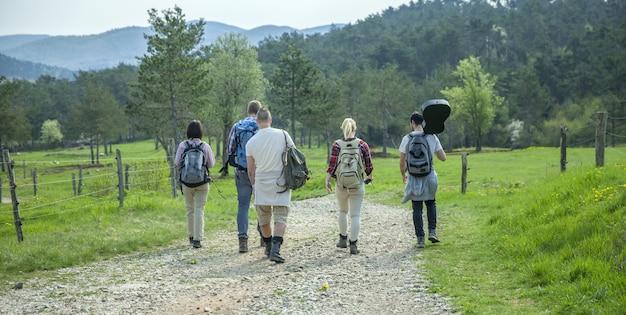 Widok młodych przyjaciół z plecakami chodzących po lesie i cieszących się dobrym letnim dniem z tyłu