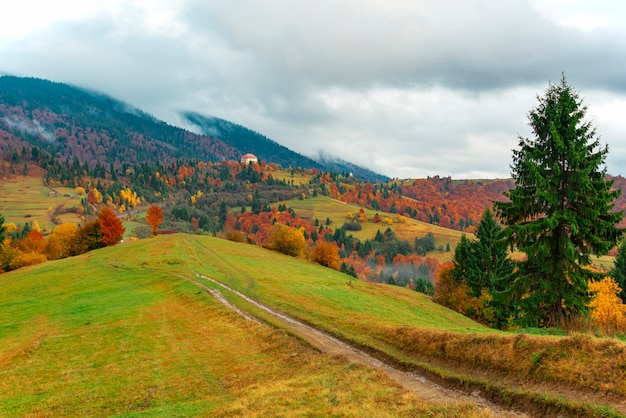 Widok na bujną kolorową dolinę z drogą i drzewami. ścieżka montażowa na zboczu wzgórza z błękitnym niebem w tle. pojęcie piękna przyrody.