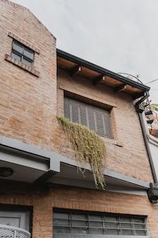 Widok na dom miejski z oknami