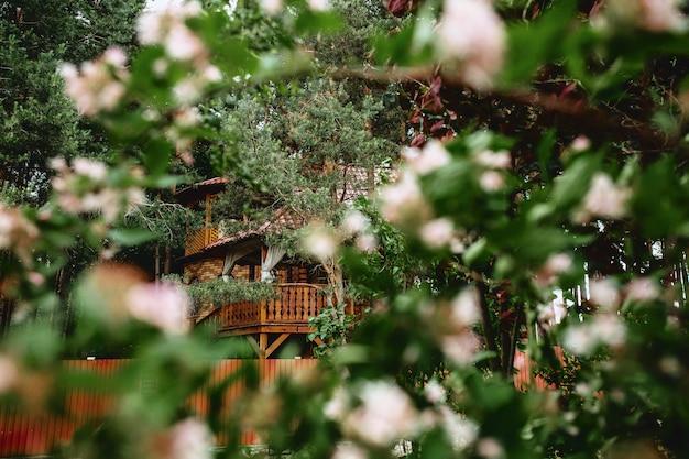 Widok na drewnianą chatkę poprzez kwitnienie drzew