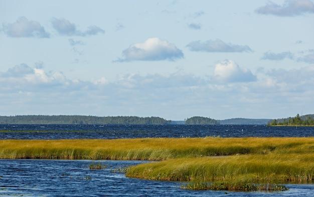 Widok na gładką taflę jeziora z roślinnością