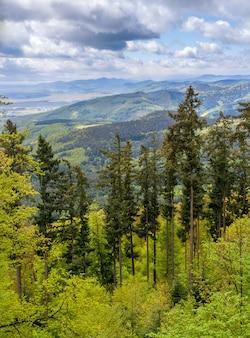 Widok na góry wogezy w alzacji