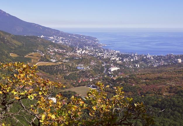 Widok na jałtę ze szczytu góry jesienne liście na drzewach bez ludzi
